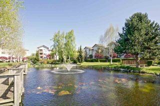 """Photo 14: 103 5600 ANDREWS Road in Richmond: Steveston South Condo for sale in """"LAGOONS"""" : MLS®# R2151403"""