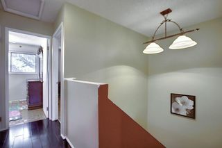 Photo 13: 58 380 BERMUDA Drive NW in Calgary: Beddington Heights Row/Townhouse for sale : MLS®# A1026855