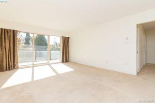 Photo 5: 314 1545 Pandora Ave in VICTORIA: Vi Fernwood Condo for sale (Victoria)  : MLS®# 773644