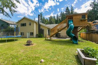 Photo 20: 3383 ROBINSON ROAD in North Vancouver: Lynn Valley House for sale : MLS®# R2096046
