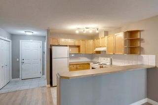 Photo 4: 204 417 3 Avenue NE in Calgary: Crescent Heights Apartment for sale : MLS®# A1117205