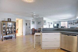 Photo 13: 302 8715 82 Avenue in Edmonton: Zone 17 Condo for sale : MLS®# E4248630
