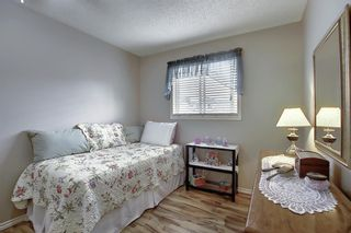Photo 17: 305 Martinwood Place NE in Calgary: Martindale Detached for sale : MLS®# A1038589