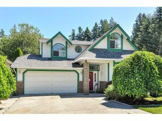 Photo 1: 12540 LAITY ST in Maple Ridge: West Central House for sale : MLS®# V1004789