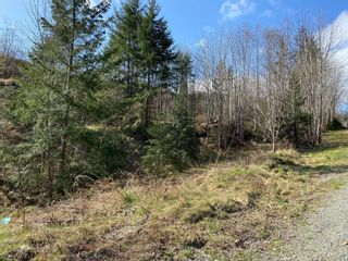 Photo 1: LOT 15 Spruce St in : CR Campbell River Central Land for sale (Campbell River)  : MLS®# 871743