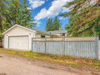 Photo 30: 3240 56 Street NE in Calgary: Pineridge Detached for sale : MLS®# C4256350