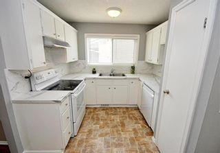 Photo 5: 123 Paddington Road in Winnipeg: River Park South Residential for sale (2F)  : MLS®# 202119787