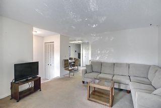 Photo 18: 47 Falworth Place NE in Calgary: Falconridge Detached for sale : MLS®# A1139441