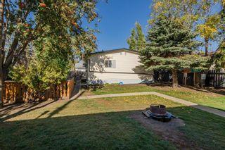 Photo 35: 5011 45 Avenue: Calmar House for sale : MLS®# E4265874