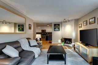 Photo 11: 9 927 19 Avenue SW in Calgary: Lower Mount Royal Apartment for sale : MLS®# A1051484