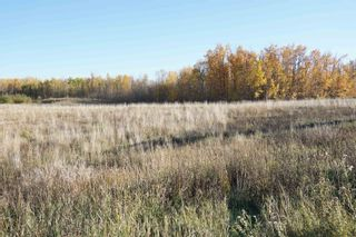 Photo 9: 17 53214 RR13: Rural Parkland County Rural Land/Vacant Lot for sale : MLS®# E4266457