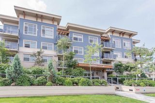 "Photo 12: 403 19936 56 Avenue in Langley: Langley City Condo for sale in ""BEARING POINTE"" : MLS®# R2236302"