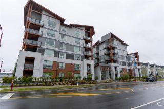 """Photo 25: 403 11501 84 Avenue in Delta: Scottsdale Condo for sale in """"Delta Gardens"""" (N. Delta)  : MLS®# R2585661"""