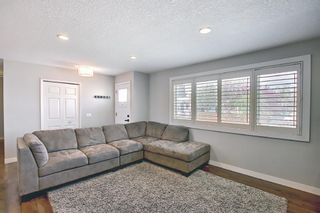 Photo 4: 5919 Pinepoint Drive NE in Calgary: Pineridge Detached for sale : MLS®# A1111211