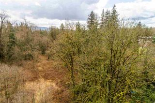 Photo 7: 30684 DEWDNEY TRUNK Road in Mission: Stave Falls Land for sale : MLS®# R2536315