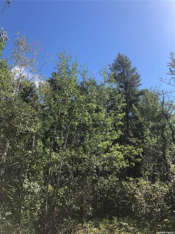 Main Photo: North ridge Dr in Hudson Bay: Lot/Land for sale : MLS®# SK873737