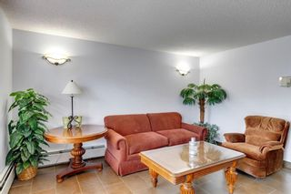 Photo 22: 304 9 Country Village Bay NE in Calgary: Country Hills Village Apartment for sale : MLS®# A1117217