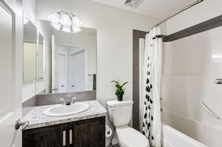 Photo 31: 136 Copperpond Parade SE in Calgary: Copperfield Detached for sale : MLS®# A1114576