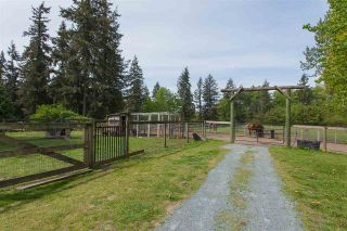 Photo 7: 699 261 STREET in Langley: Otter District House for sale : MLS®# R2264601