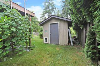 Photo 34: 5390 WALLACE Avenue in Delta: Pebble Hill House for sale (Tsawwassen)  : MLS®# R2610630