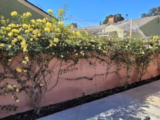 Photo 59: 10434 Pounds Avenue in Whittier: Residential for sale (670 - Whittier)  : MLS®# PW21179431