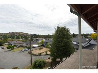 Photo 20: 3601 Cedar Hill Rd in VICTORIA: SE Cedar Hill House for sale (Saanich East)  : MLS®# 739653