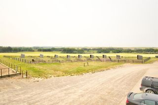 Photo 9: 3245 Twp Rd 292: Rural Mountain View County Detached for sale : MLS®# A1144764