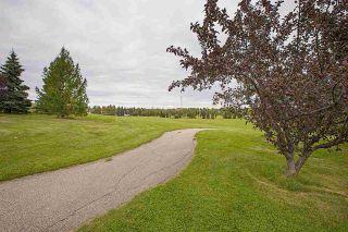 Photo 50: 15235 43 Avenue in Edmonton: Zone 14 House for sale : MLS®# E4234464