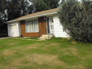 Photo 20: 5234 Ravine Drive: Elk Point House for sale : MLS®# E4211315