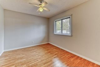Photo 15: 8815 36 Avenue NW in Calgary: Bowness Detached for sale : MLS®# A1151045