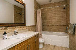 Photo 28: 11 ST VITAL Avenue: St. Albert House Half Duplex for sale : MLS®# E4233836