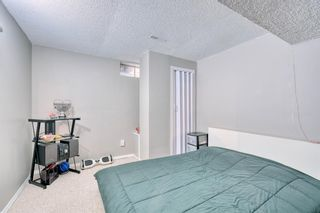 Photo 23: 41 Edgeford Road NW in Calgary: Edgemont Detached for sale : MLS®# A1025189