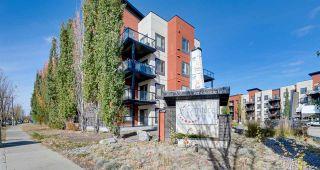 Photo 25: 421 304 AMBLESIDE Link in Edmonton: Zone 56 Condo for sale : MLS®# E4236988