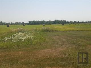 Photo 6: 6579 Henderson Highway: Gonor Residential for sale (R02)  : MLS®# 1823034