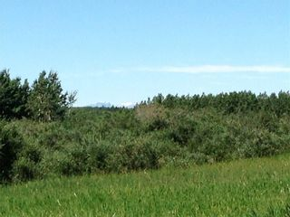 Photo 20: TWP RD 272 & RR 41 in Rural Rocky View County: Rural Rocky View MD Residential Land for sale : MLS®# A1127957