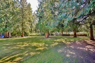 Photo 4: 19822 24 Avenue in Langley: Brookswood Langley House for sale : MLS®# R2590358
