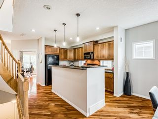 Photo 8: 519 37 Street SW in Calgary: Spruce Cliff Detached for sale : MLS®# A1100007