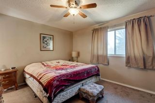 Photo 14: 11 Bedwood Place NE in Calgary: Beddington Heights Detached for sale : MLS®# A1145937