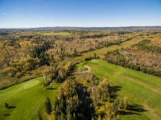 Photo 11: 4705 LENO Road in Prince George: Pineview Business with Property for sale (PG Rural South (Zone 78))  : MLS®# C8013941