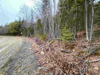 Photo 4: Lot 7 Lower Grant Road in Chester Basin: 405-Lunenburg County Vacant Land for sale (South Shore)  : MLS®# 202110749