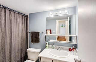 Photo 23: 432 11620 Elbow Drive SW in Calgary: Canyon Meadows Apartment for sale : MLS®# A1119842