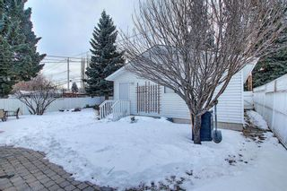 Photo 39: 8019 4A Street SW in Calgary: Kingsland Detached for sale : MLS®# A1063979