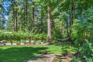 Photo 52: 4498 Colwin Rd in : CR Campbell River South House for sale (Campbell River)  : MLS®# 879358