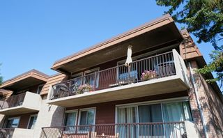 Photo 4: 55C 231 Heritage Drive SE in Calgary: Acadia Apartment for sale : MLS®# A1144362
