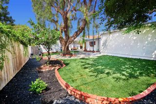 Photo 20: LA MESA House for sale : 3 bedrooms : 4585 3rd Street