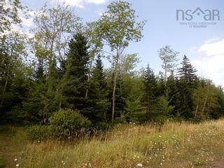 Photo 3: Salem Road in Greenhill: 108-Rural Pictou County Vacant Land for sale (Northern Region)  : MLS®# 202121181