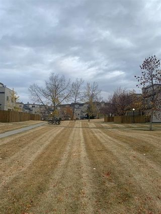 Photo 7: 404 1540 29 Street NW in Calgary: St Andrews Heights Apartment for sale : MLS®# C4281452