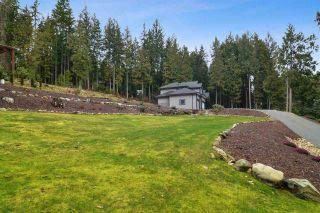Photo 35: 12433 MCNUTT Road in Maple Ridge: Northeast House for sale : MLS®# R2547502