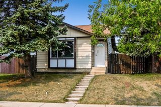 Photo 30: 191 Erin Woods Drive SE in Calgary: Erin Woods Detached for sale : MLS®# A1146984