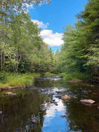 Photo 8: Lot Highway 4 False Bay Brook in River Bourgeois: 305-Richmond County / St. Peters & Area Vacant Land for sale (Highland Region)  : MLS®# 202123291